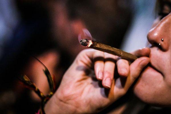 el-debate-político-en-torno-al-cannabis-resurge-en-españa