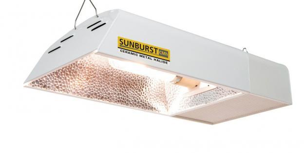 Sunburst CMH