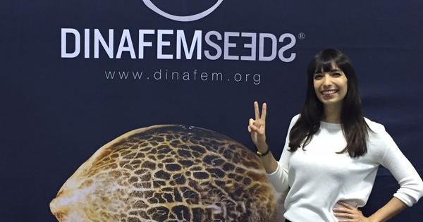 Jodie Emery Dinafem Seeds