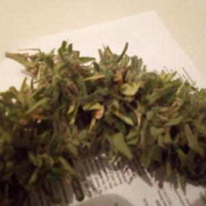 Photo de Amnesia CBD de imtcbs007
