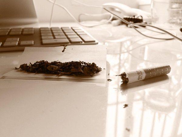 tabaco principal