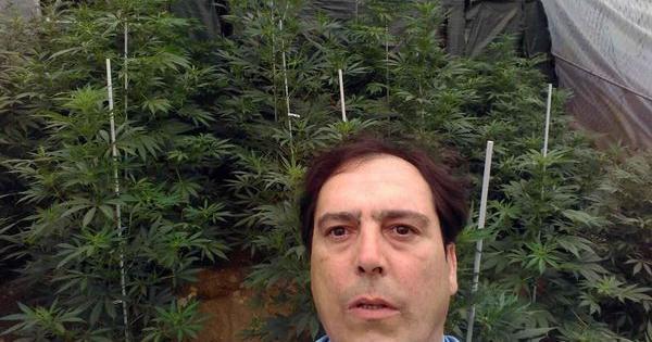 abel amor entrevista cannabis