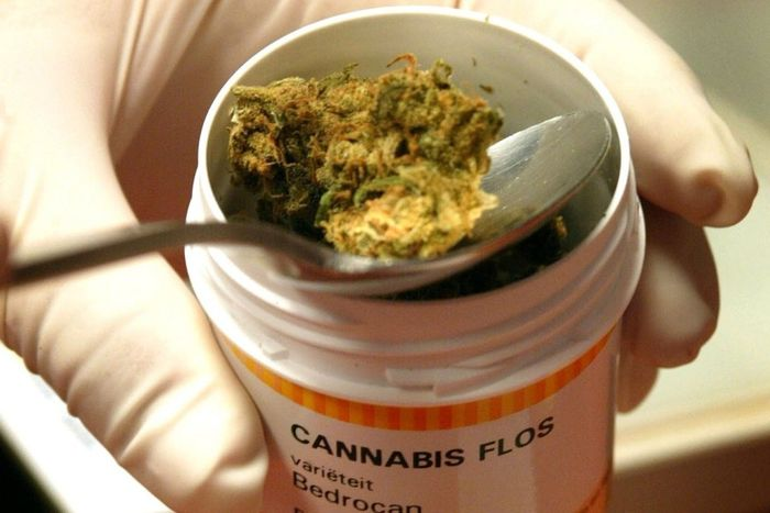the worst part in legalizing the use of marijuana