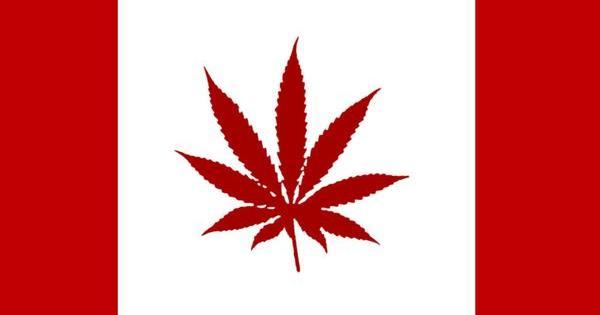 canada legalise marijuana g7 cannabis legal