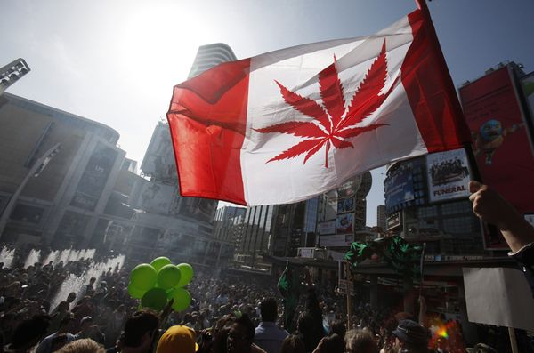 canada regolamenta cannabis