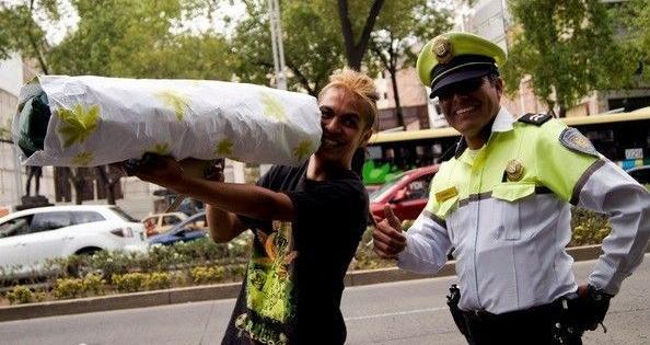 cannabis Mexique