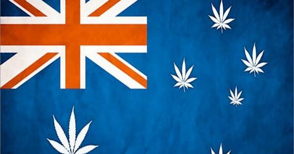 cannabis terapeutico australia