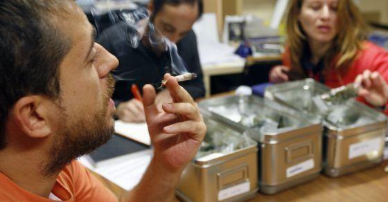 club cannabis Spagna storia