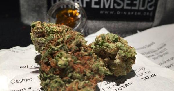 colorado revolution marijuana
