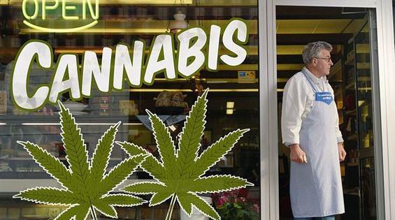 crise cannabis colorado