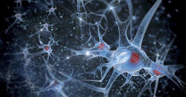 Dolor cronico nanotecnologia sevilla