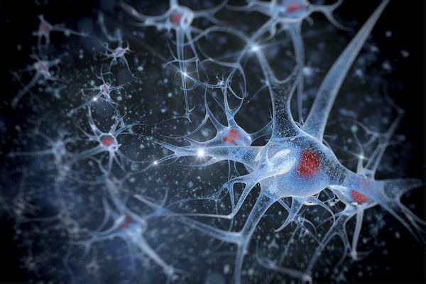 douleur chronique nanotechnologie seville