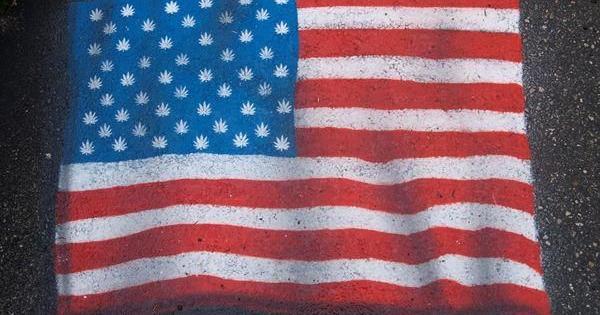 eeuu legalizar marihuana medicinal variedades