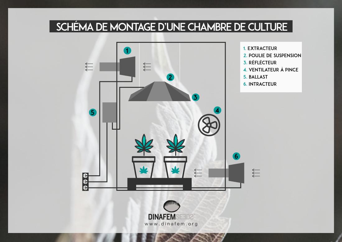 La Ventilation Dans La Culture Du Cannabis