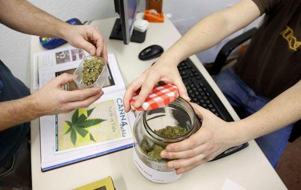gobierno recurre ordenanza clubs cannabis san