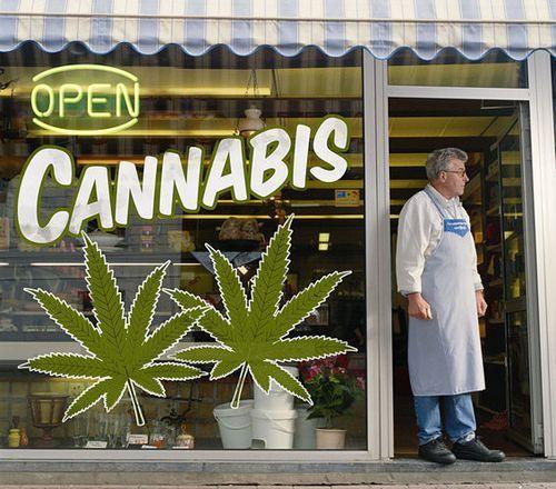 grande crisi marijuana 2011