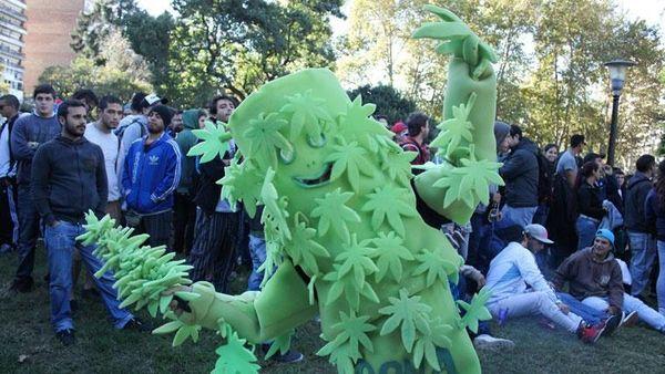 de-la-maceta-al-cogollo-disfraces-de-marihuana-para-arrasar-en-carnavales