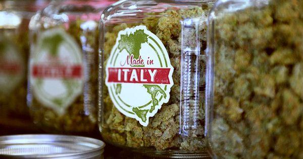 legalizzazione italia cannabis