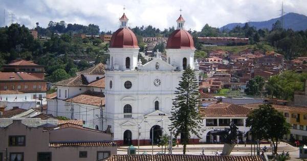 licenze coltivazione marijuana colombia