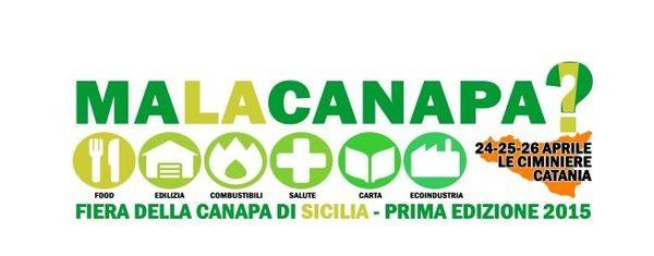 malacanapa cannabis fair sicily dinafem