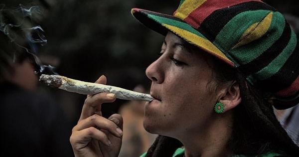 manual prevent bad trip cannabis
