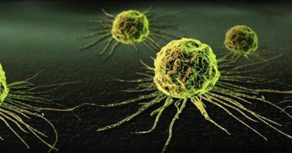 marijuana traitement cancer