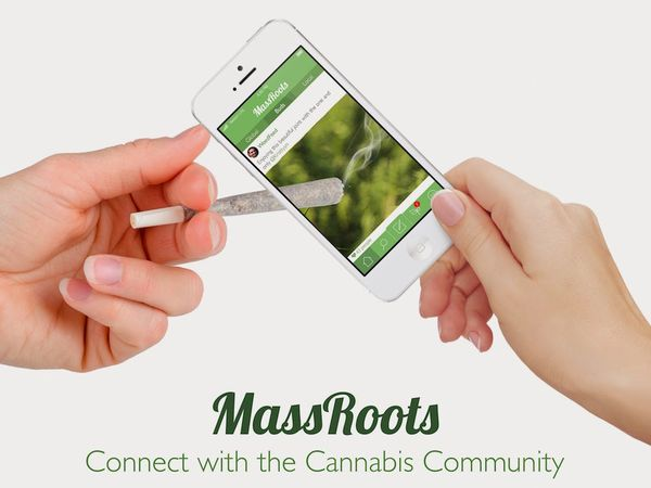 massroots instagram cannabis borsa