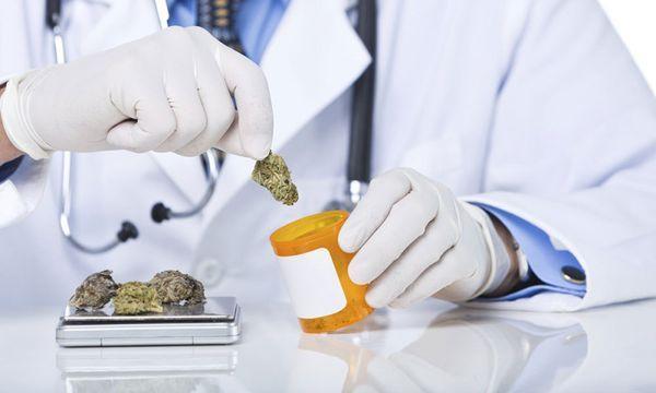 paediatricians usa safety medical marijuana