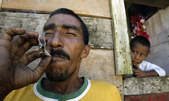pays caraibes cannabis