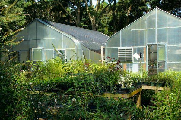 deprivation light greenhouses