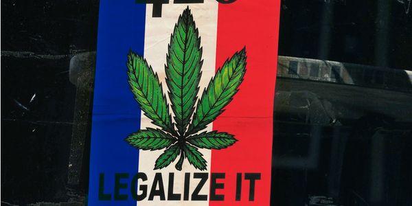 prohibicion cannabis francia