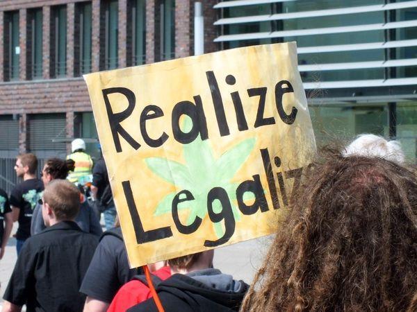 resultados electorales cannabis