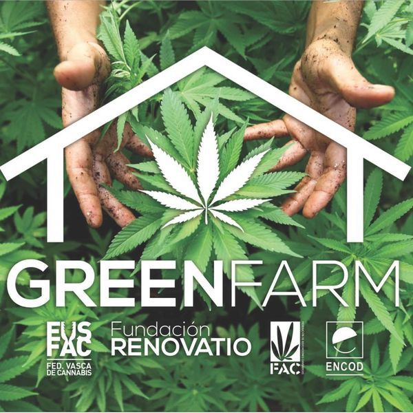 ruling greenfarm growing marijuana