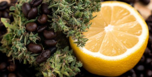 Marihuana y sabor