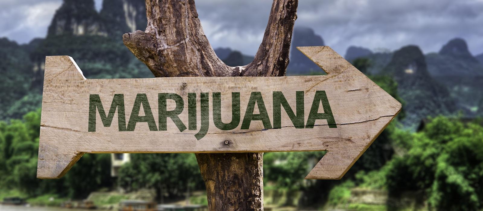 el-próximo-gran-avance-en-la-marihuana-el-turismo