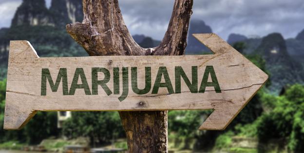 Cartel marihuana