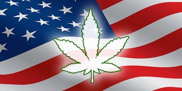 usa vota veterani marijuana cannabis medici
